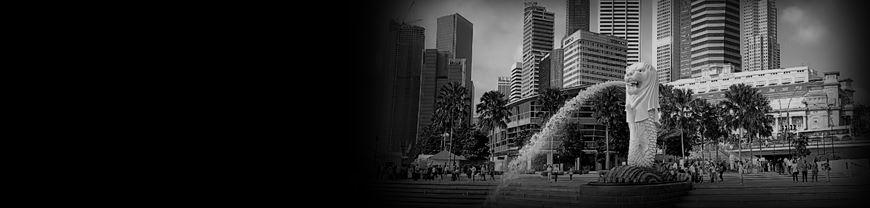 シンガポール入門